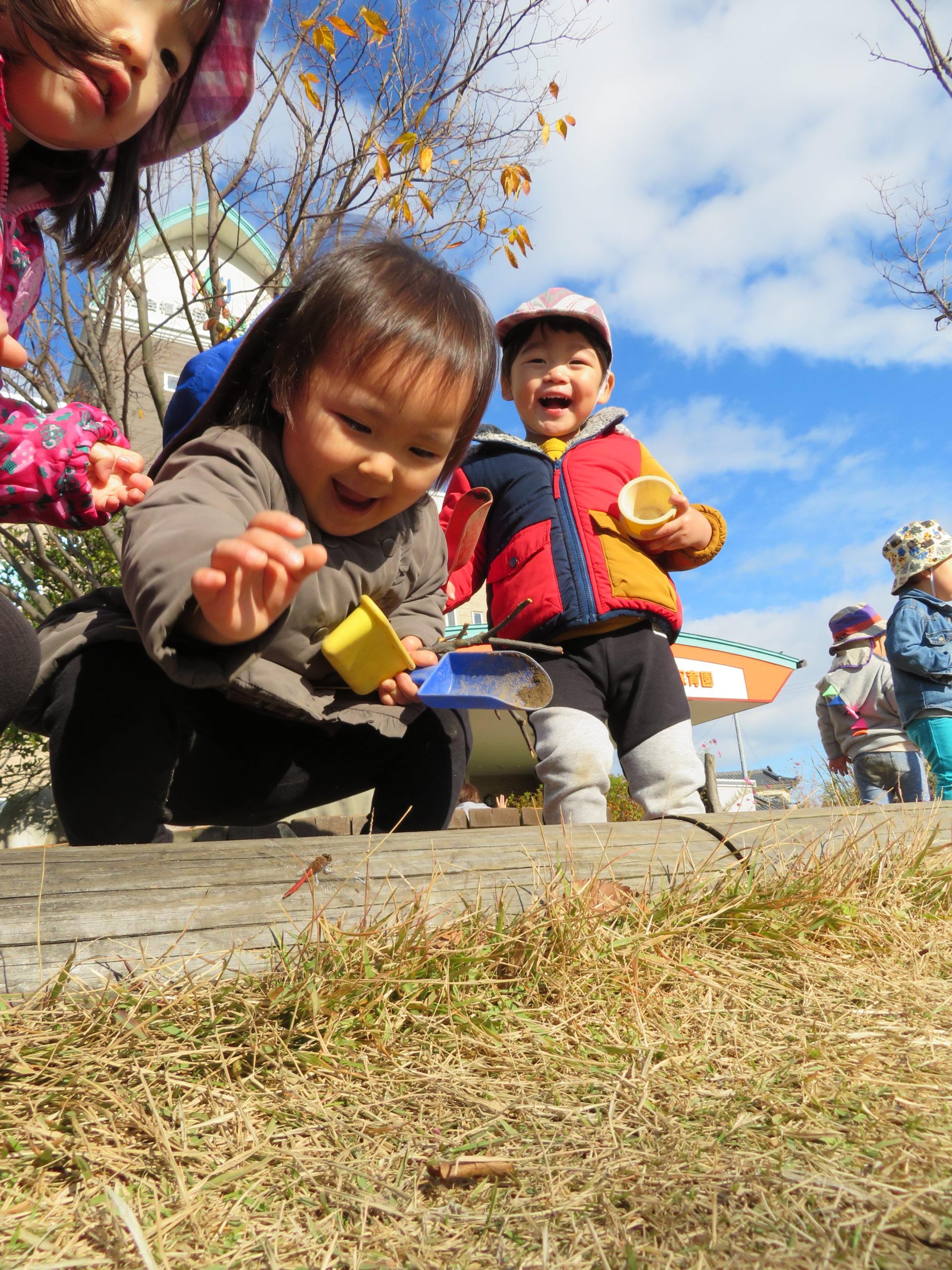 😊遊コスモス小新保育園 「1歳児 🌳Autumn🌰」