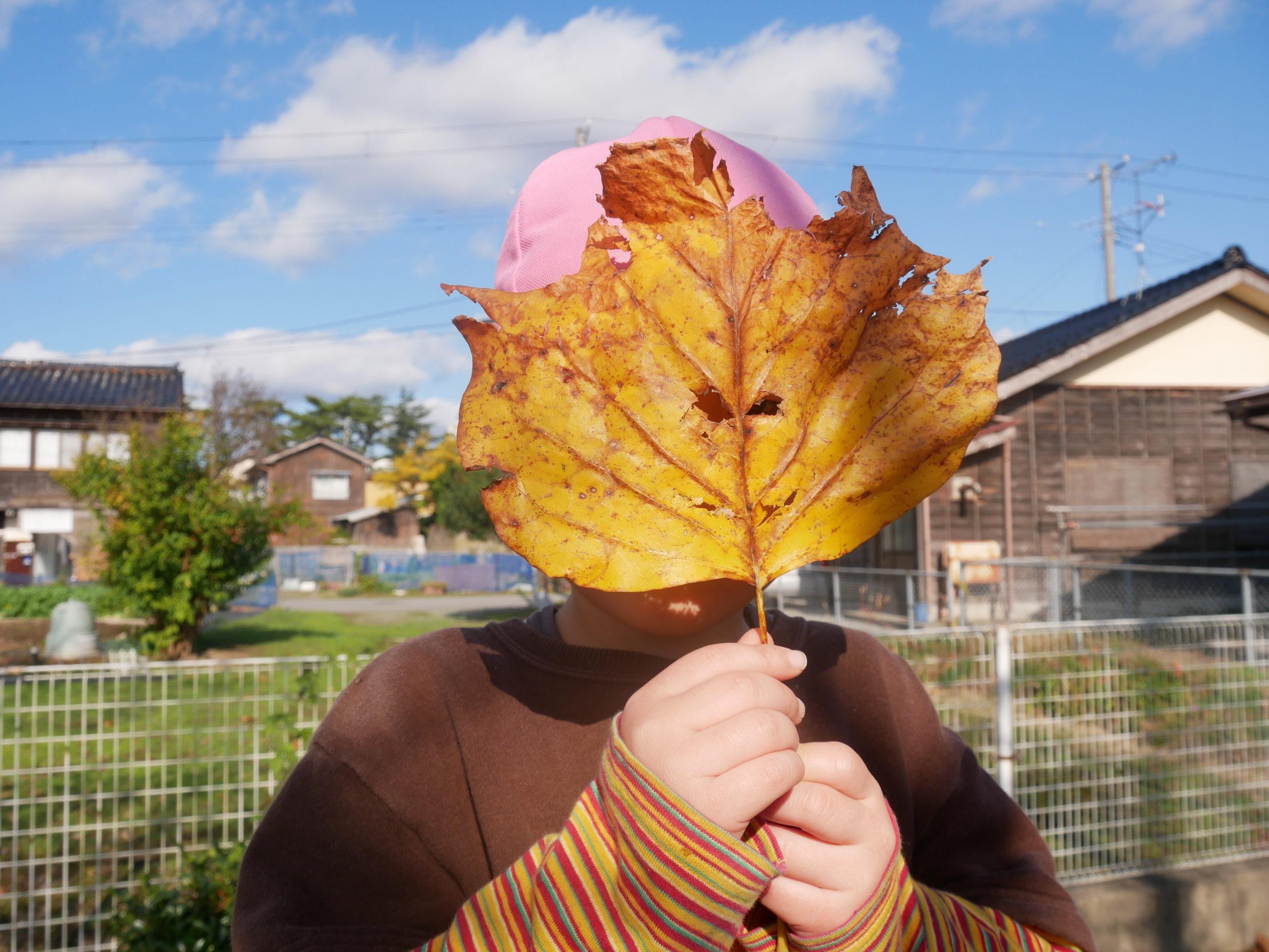 秋晴れの園庭 5歳児ばら組【真野第1保育園】