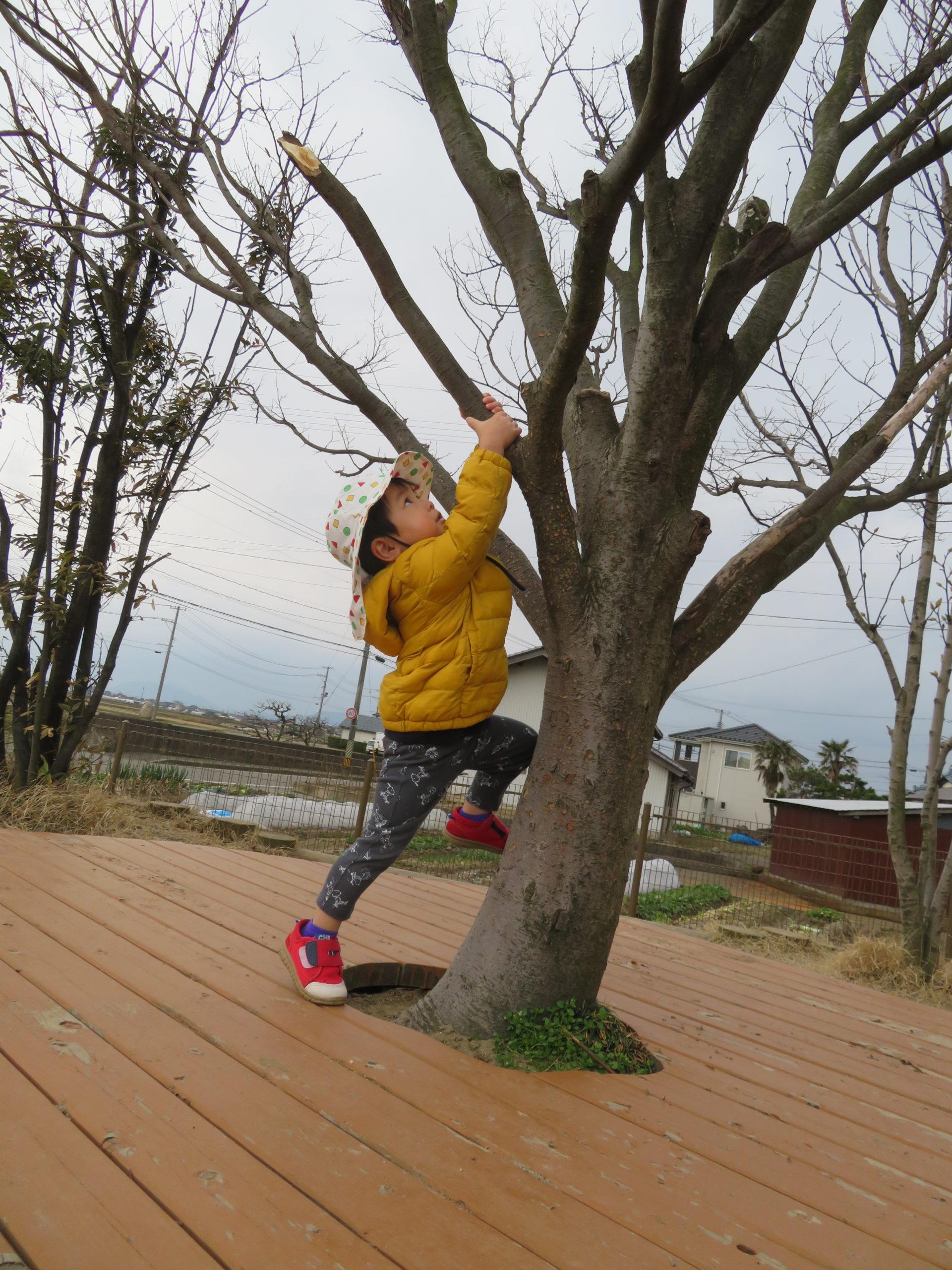 😊遊コスモス小新保育園「☀️0.1歳児 Play outside🌳」