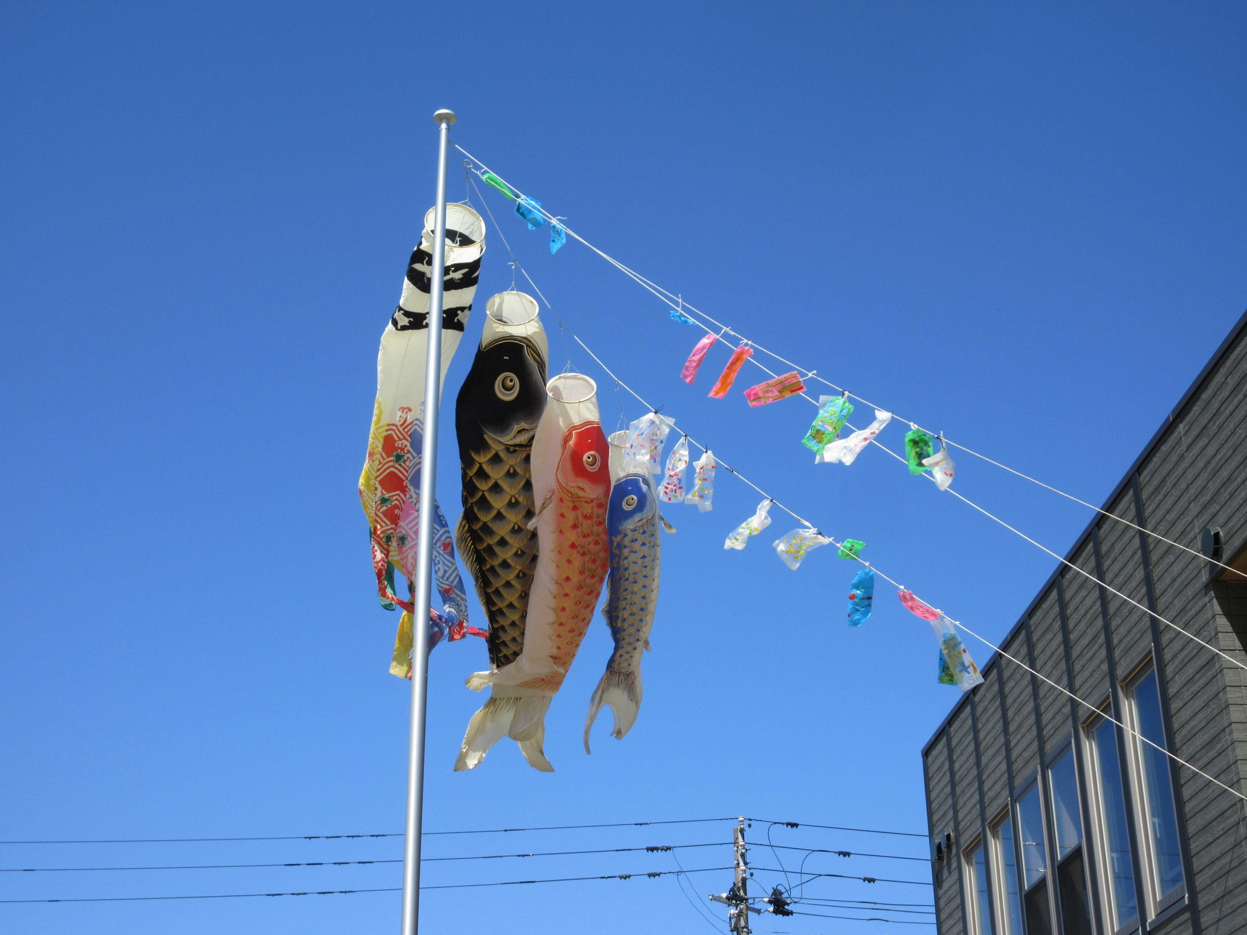 屋根より高いこいのぼり~🎏  【白根おおぞら保育園】