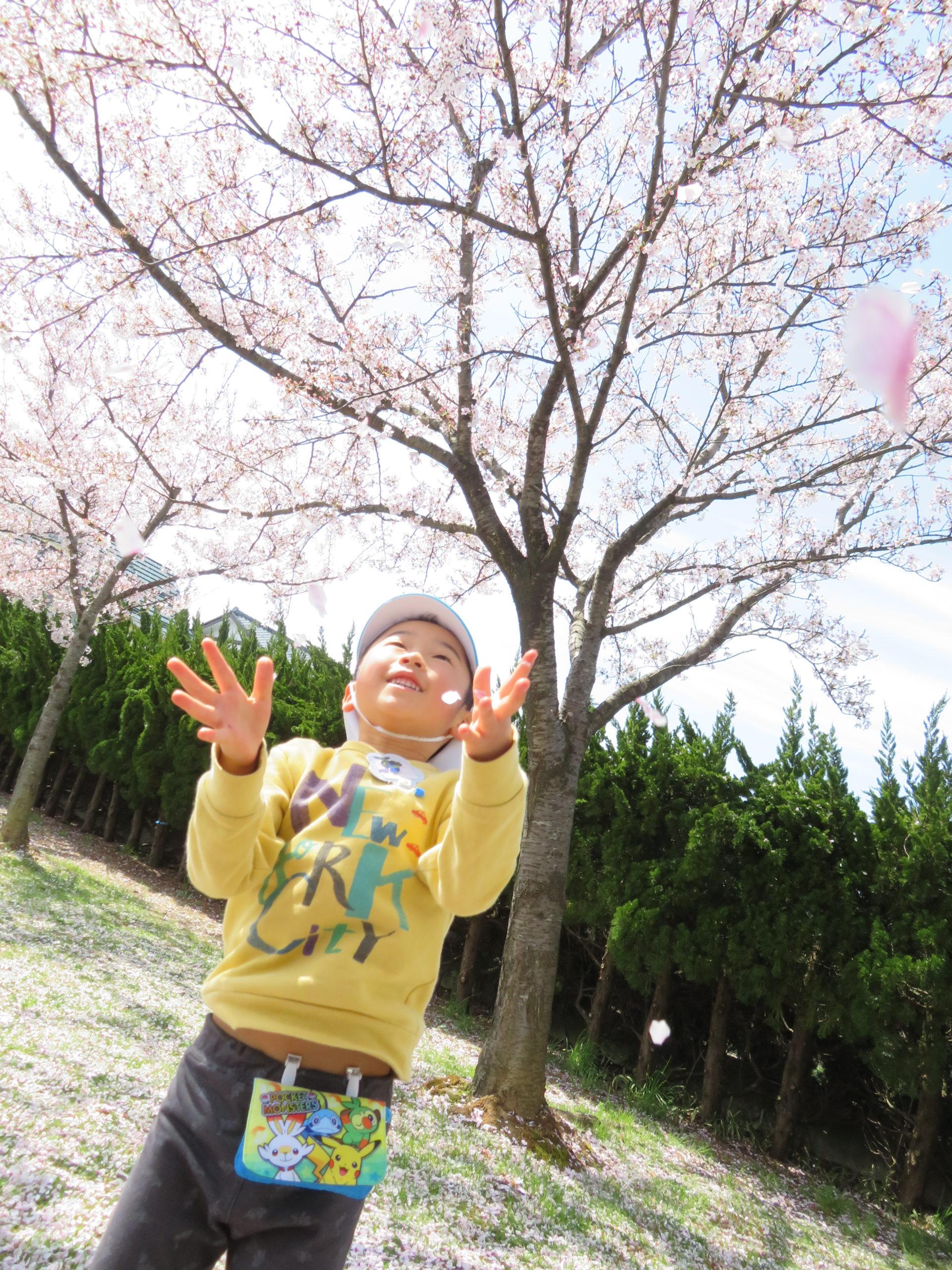 😊遊コスモス小新保育園「5歳児 はなさかじいさん❓🌸✨」