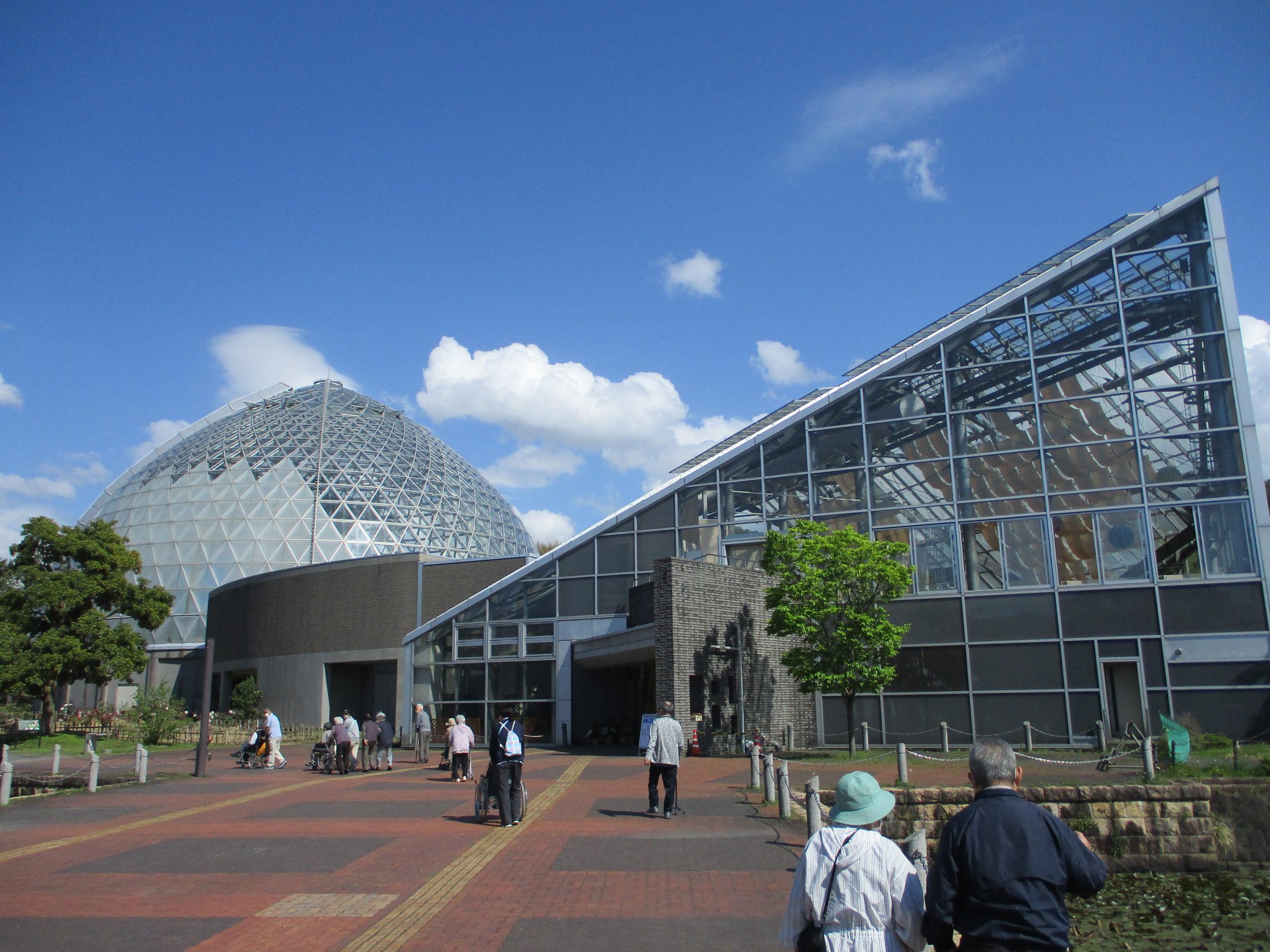【デイサービスセンター白根そよ風の杜】初夏の散策!新津植物園ドライブツアー☆